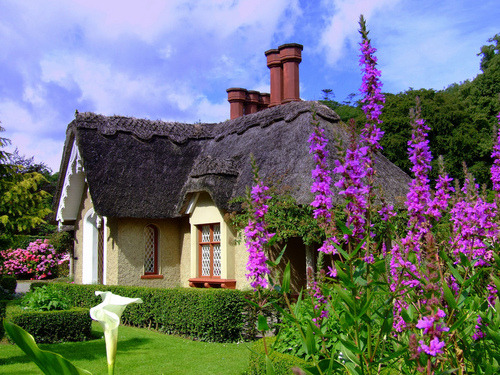 sunsurfer:  Thatched Garden House, Killarney, Ireland photo By Joe Cashin