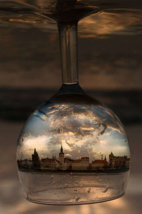 daxxxx:  Wine glass reflection