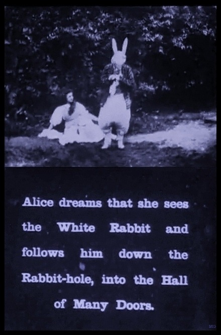 mothgirlwings:  Alice In Wonderland - (1903)