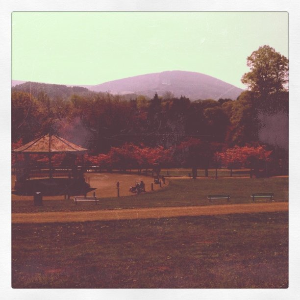 Afternoon sunshine (Taken with Instagram at Pontypool Park)