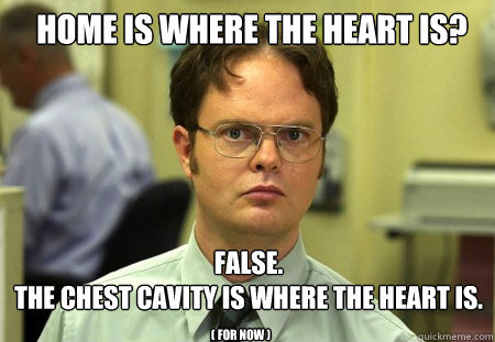 yourmindblown:   via Schrute - home is where the heart is …
