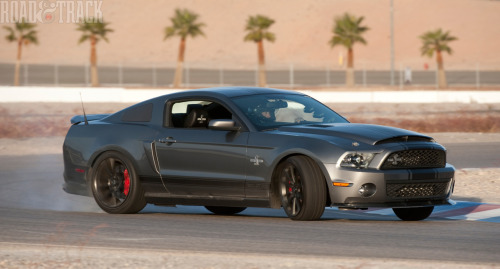 Super Snake The 2011 Shelby GT500 Super Snake starts life as a customer-purchased 2011 Ford GT500 that Shelby will convert to Super Snake status for $34,245. It includes uprating the supercharger to a Ford  Racing Whipple unit, helping the new all-aluminum 5.4-liter Ford V-8  make 750 bhp. More is  available if so desired.