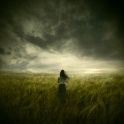 """The Premonition"" 