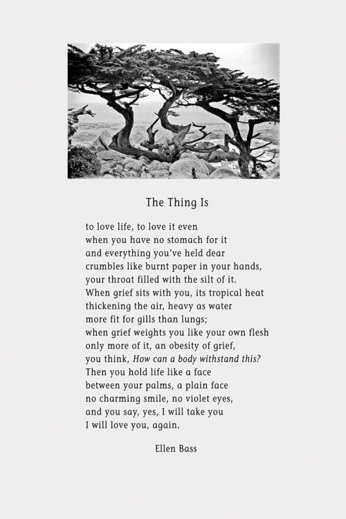 """The Thing Is,"" a poem by Ellen Bass, is now available as a broadside. Proceeds benefit Syracuse Cultural Workers."