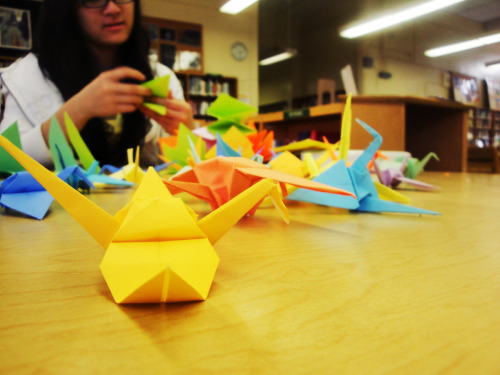 Paper cranes for Japan at the library 3-30-2011