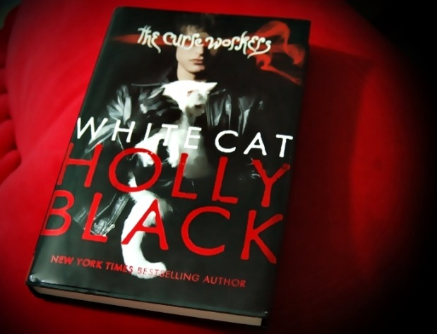 Holly Black White Cat Review White Cat by Holly