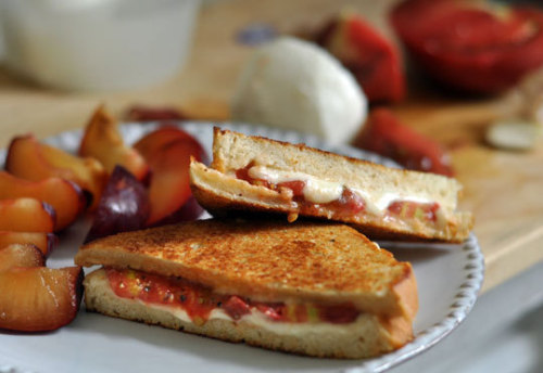 lovelylovelyfood:  Grilled Tomato and Mozzarella Sandwich