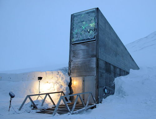 "readmorewikipedia:  The Svalbard Global Seed Vault is a secure seedbank located on the Norwegian island of Spitsbergen near the town of Longyearbyen in the remote Arctic Svalbard archipelago, about 1,300 kilometres (810 mi) from the North Pole. The facility preserves a wide variety of plant seeds in an underground cavern. The seeds are duplicate samples, or ""spare"" copies, of seeds held in genebanks worldwide. The seed vault will provide insurance against the loss of seeds in genebanks, as well as a refuge for seeds in the case of large scale regional or global crises."