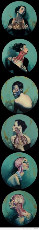 9gag:  Awesome Anatomy Illustration