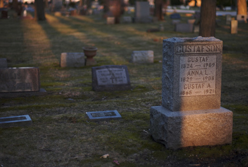 20110408_L1002304 on Flickr.Via Flickr: Evening graveyard