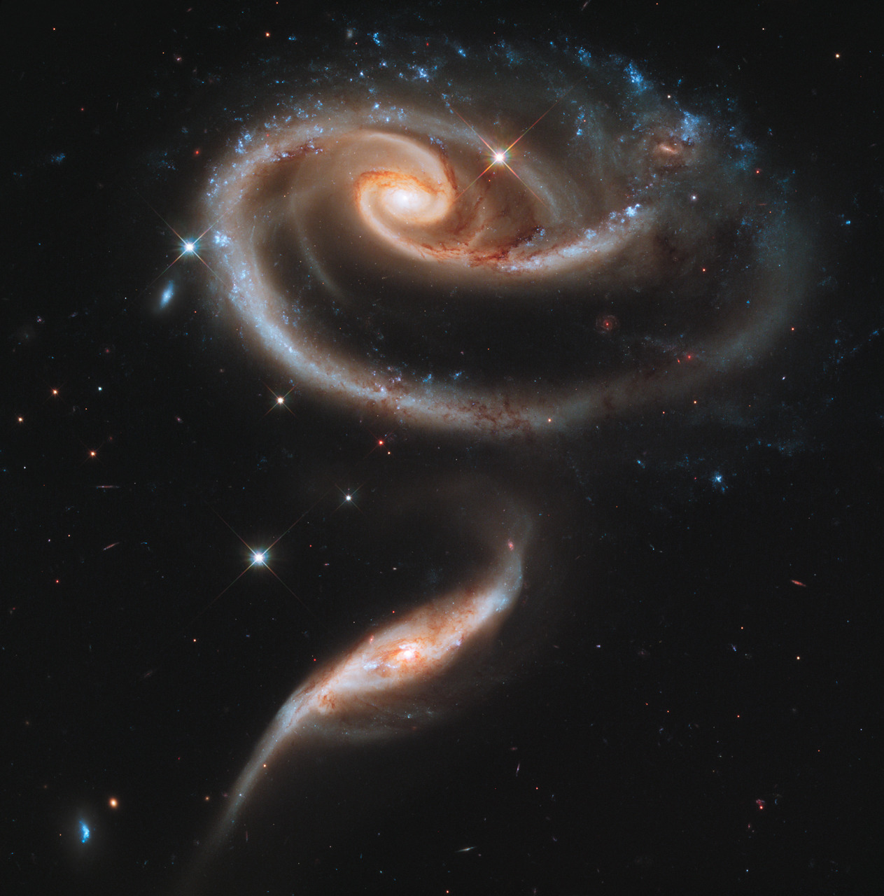 itsfullofstars:  APOD: Peculiar Galaxies of Arp 273 Credit: NASA, ESA, and the Hubble Heritage Team (STScI / AURA) Explanation: The spiky stars in the foreground of this sharp cosmic portrait are well within our own Milky Way Galaxy. The two eye-catching galaxies lie far beyond the Milky Way, at a distance of over 300 million light-years. Their distorted appearance is due to gravitational tides as the pair engage in close encounters. Cataloged as Arp 273 (also as UGC 1810), the galaxies do look peculiar, but interacting galaxies are now understood to be common in the universe. In fact, the nearby large spiral Andromeda Galaxy is known to be some 2 million light-years away and approaching the Milky Way. Arp 273 may offer an analog of their far future encounter. Repeated galaxy encounters on a cosmic timescale can ultimately result in a merger into a single galaxy of stars. From our perspective, the bright cores of the Arp 273 galaxies are separated by only a little over 100,000 light-years. The release of this stunning vista celebrates the 21st anniversary of the Hubble Space Telescope in orbit.