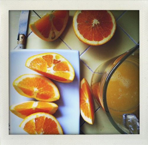 Washington Navel Oranges from my orchard.  Flippin terrific.