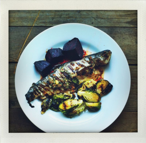 Guilt free lunch.  Grilled rainbow trout, beets, and brussels.