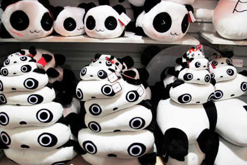 ohmyasian:  (via the-absolute-best-posts)2103. Panda Plushies. PANDAS GALORE!