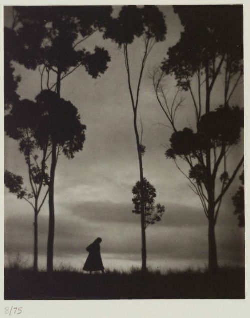 Karl Struss Storm Clouds, La Mesa, California, 1921 Thanks to wonderfulambiguity