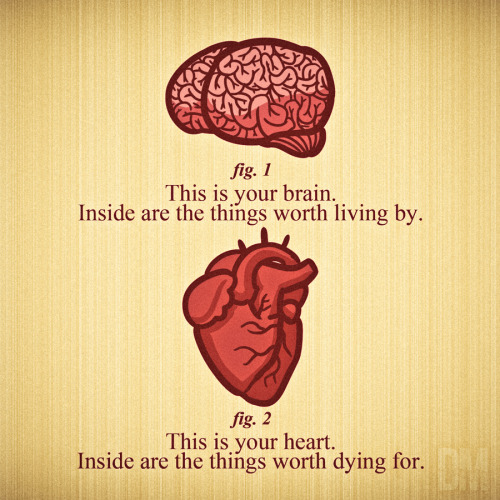 "cardiac-art:  ""Brain & Heart"" by Diego Mendez"