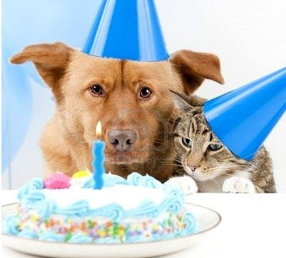 The joint birthday party was about to take a sour turn after they were expected to share. Everyone knew there would be tears before bedtime.
