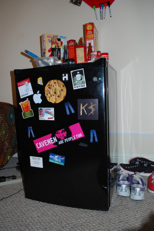 FRIDGE PSSSSSST… hey you, YEAH, YOU! ever wonder where you can stash that extra burrito from Taco Bell®, or that last chicken strip from Popeyes® without having to worry about people stealing it from the community fridge??? WELL, WHY NOT GET THIS HERE (COUNTERHIGH) FRIDGE? This beautifully crafted General Electric fridge can preserve even your unhealthiest of foods and provide you with a cool drink in this broiling weather. Only $70!!!— since everyone's so poor or whatever. PRICE IS STILL NEGOTIABLE!!! (stickers, cereal, knife, shoes and multivitamins not included. Redbull may or may not be forgottenincluded).  UPDATE: MY COUSIN BASICALLY SAW THE OPPORTUNITY TO TAKE IT AND USE IT IN HER OFFICE (le sigh)