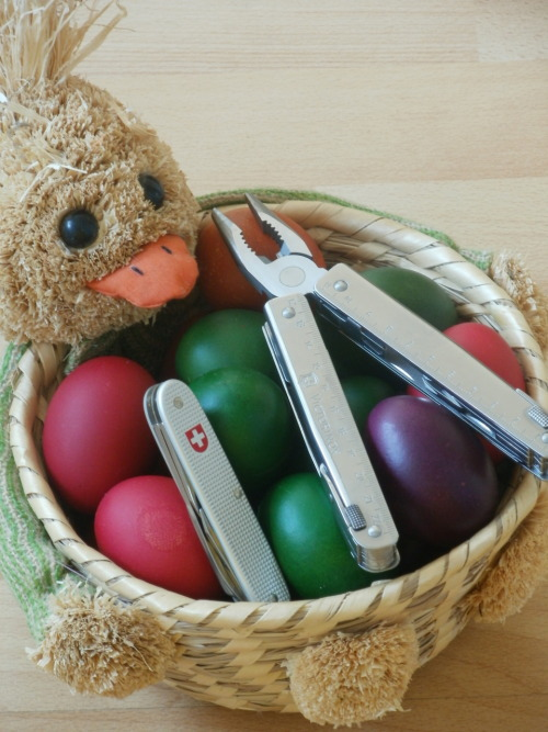 submitted by SRBraniac  Happy Easter to all!! Have a nice one and enjoy with family and friends.  Editor's Note: Thanks, SRB! Have a Happy Easter and carry on, everyone~~