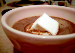 NUTELLA HOT CHOCOLATE  1 cup whole milk (feel free to substitute skim, rice, almond, etc) 3 tbp Nutella or other chocolate-hazelnut spread 1 cinnamon stick 1 tsp cocoa powder ( a good quality one better) one or more marshmallows (alot I should say ^^) pinch of espresso powder (optional) In a heavy-bottomed sauce pan over a low flame, whisk together the milk, Nutella, cocoa powder, and espresso (if using). Add cinnamon stick. Simmer for about 5 minutes, to allow flavors to meld. -serves one,generously ;)  listen to Lisa Ono - C'est Si Bon (It's So Good) or Jazz music while drinking your Hot Cocoa :)) perfect!!!