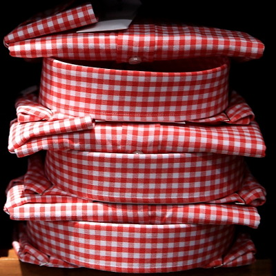 gingham day: in red / cuadros: en rojo