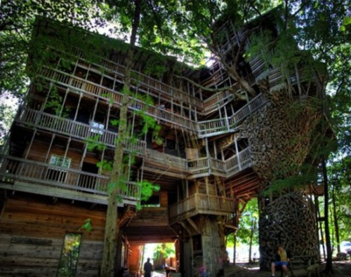 austenian:  Big Tree House (awesome).