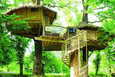 forneverforever:  I want to live in a tree house