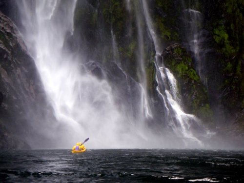 Kayaking in the Milford Sound was hands down one of the best things we  have done in New Zealand so far. The guided tour was a bit expensive for  our shoestring budget but totally worth it for the opportunity to kayak  under Stirling Falls and have playful seals as company.