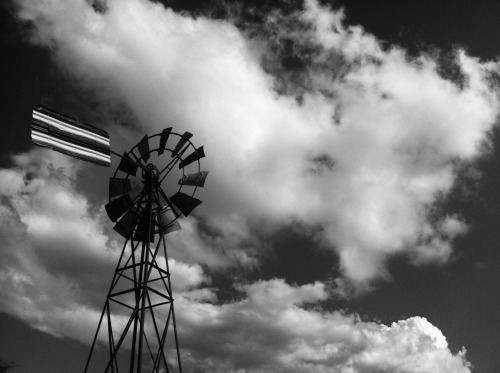 glass-cumquat:  Highfields Windmill (Black and White)iPhone 4Vintage B&W App