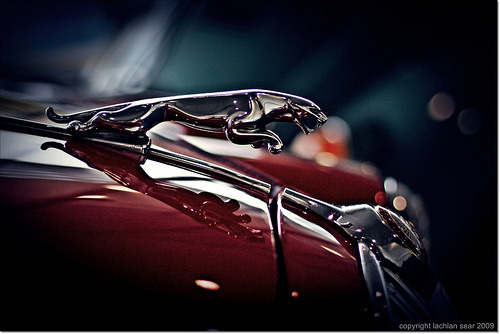 carpr0n:  Roar Starring: Jaguar Mark 2 (by lachlansear)