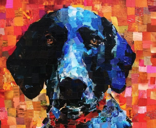 Amazing dog portraits made out of paper collage by Sam Price.