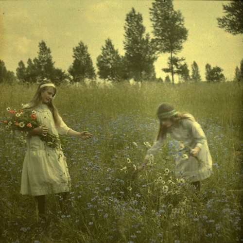 decemberrose:  Two Girls Picking Flowers, 1912