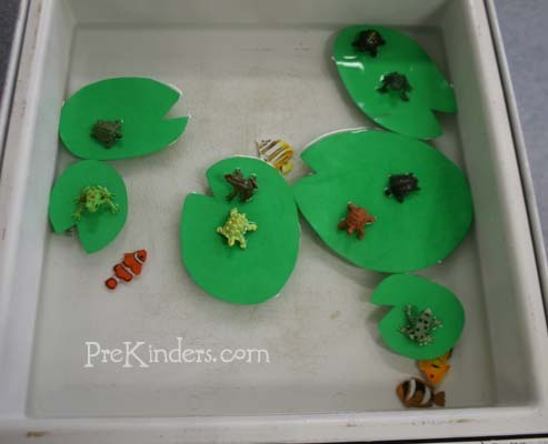 teachpreschool:  (via Pond Life Sensory Table — PreKinders)