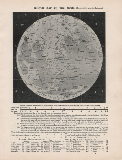 worldofrarebookephemera:  Beautiful vintage 1950s map of the moon