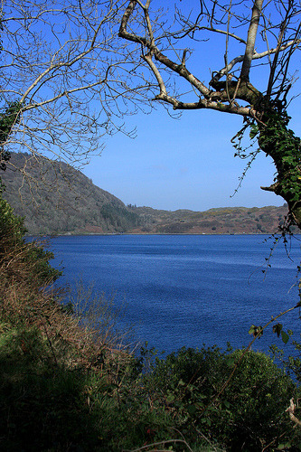 dorasireland:  Lough Hyne , Skibbereen (by kaymitchellphoto.com)