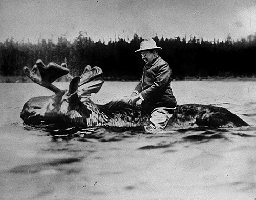Theodore Roosevelt, riding a moose, 1900.  Well, he was the most badass president.