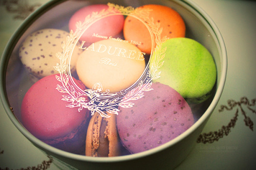 gastrogirl:  macarons from laduree in paris.