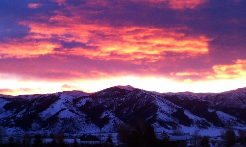winterzero:  From my back porch in Montana, the morning the tsunami hit Japan.