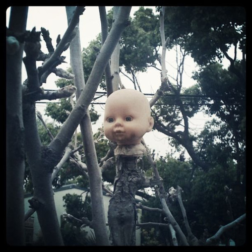 my neighbors are creepy.