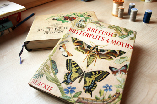 More butterfly books! I'm going to have the most fun anyone's ever had.