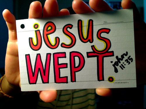 ;jesus wept.}john 11:35   This is one of my favorite Bible verses. The verse itself is so simple and short, but to me it contains such a strong message. Jesus wept. Just by those two words, the humanity and empathy that Jesus had is just pouring out.
