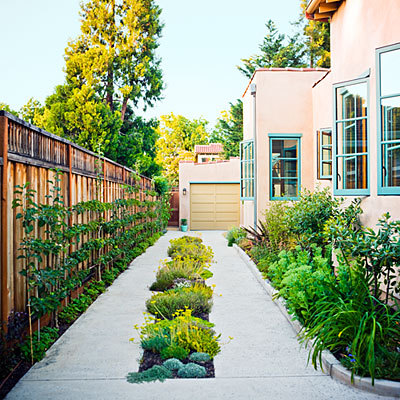 Garden in a driveway. (Via Sunset.com. Photo: Thomas J. Story.)