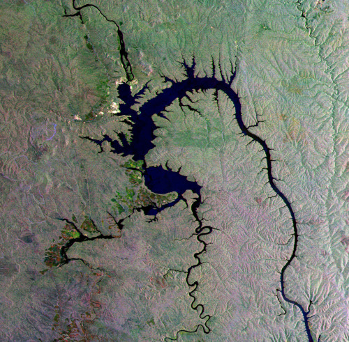 Earth from Space: Siberian 'gecko' .  The gecko-shaped body of water featured in this Envisat radar image was formed by the Bratsk Reservoir in southeastern Siberia, Russia. The reservoir was formed in the 1960s by damming the Angara River to provide hydroelectric power. The dam, 125 m high and 4417 m wide, was built near the city of Bratsk (white area in the upper left). Agricultural crops can be seen along the southwestern side of the reservoir, including grains, potatoes and vegetables. (via ESA)