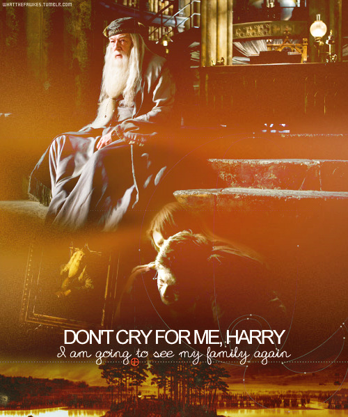 whatthefawkes:   Things left unsaid: Albus Dumbledore to, Harry PotterDon't cry for me, Harry. I am going to see my family again.