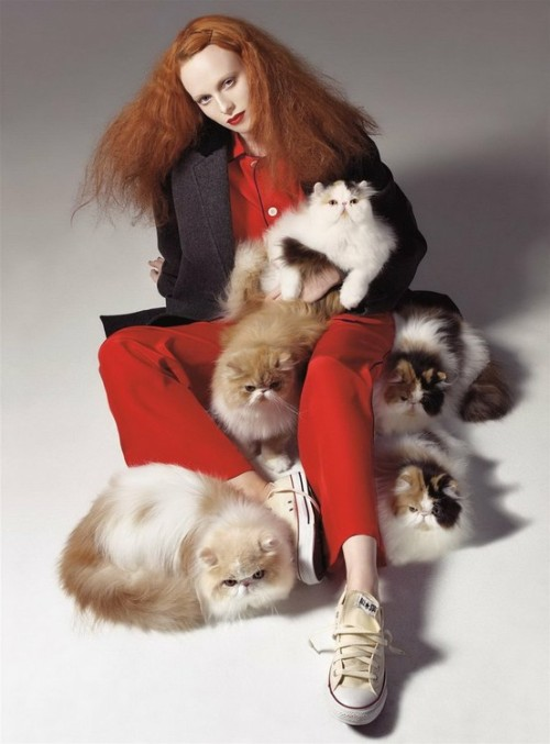 Karen Elson and cats. Meoooow!