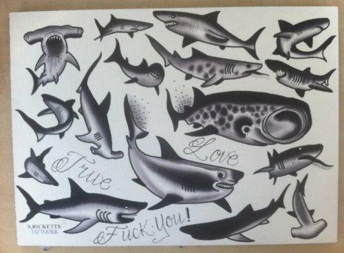 shark tattoo flash. house Biomechanical Tattoos flash shark tattoo flash. shark tattoo flash.