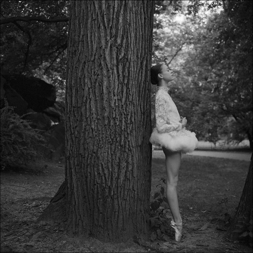 Dane Shitagi-Ballerina Project
