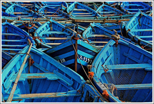 So many blue boats