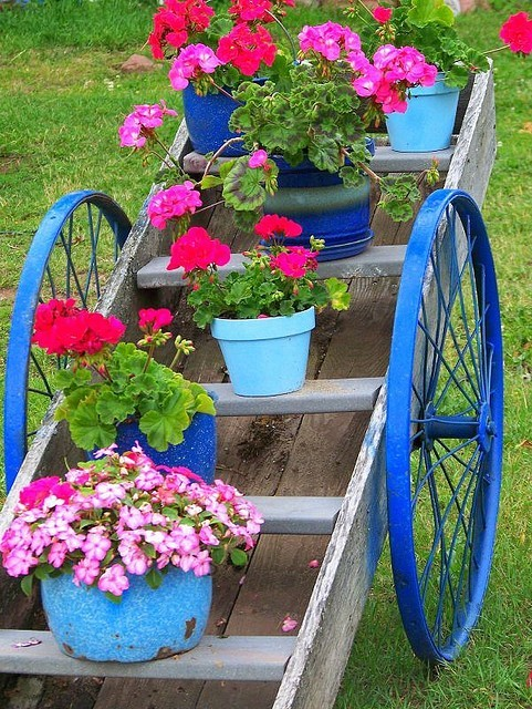 whimsicalraindropcottage:  (via Garden Cart | Flickr - Photo Sharing!)