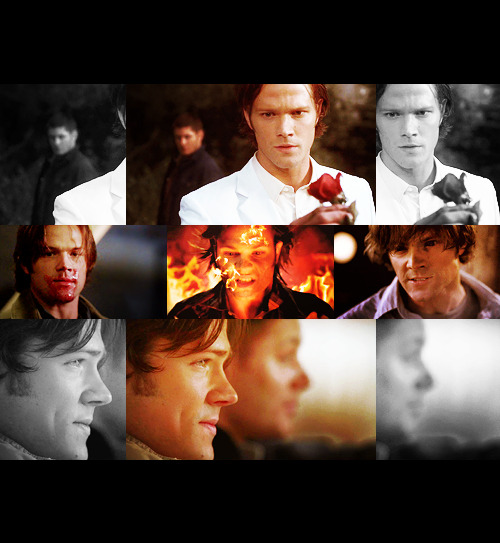 "TV Shows Challenge | 9 characters you love: Samuel ""Sam"" Winchester (Supernatural)  ""It doesn't matter what you are. It only matters what you do. It's your choice."""